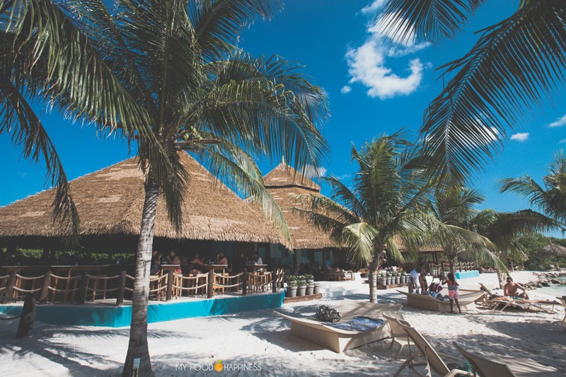 Besides the famous pink flamingos on Flamingo beach, the Renaissance private island in Aruba has a lot more to offer. Find out what are the 5 other reasons why you need to visit this paradise.